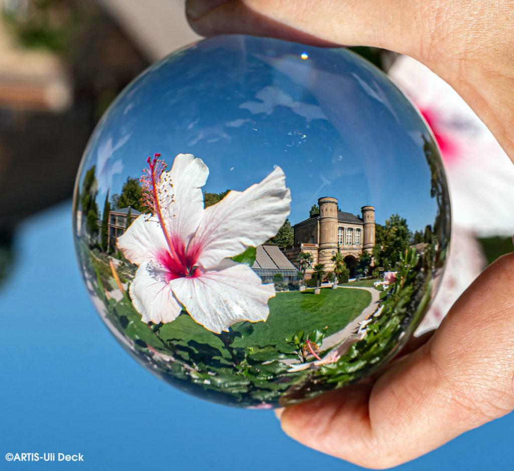 Der Botanische Garten Karlsruhe, gesehen in einer Glaskugel. Foto Copyright: ARTIS-Uli Deck
