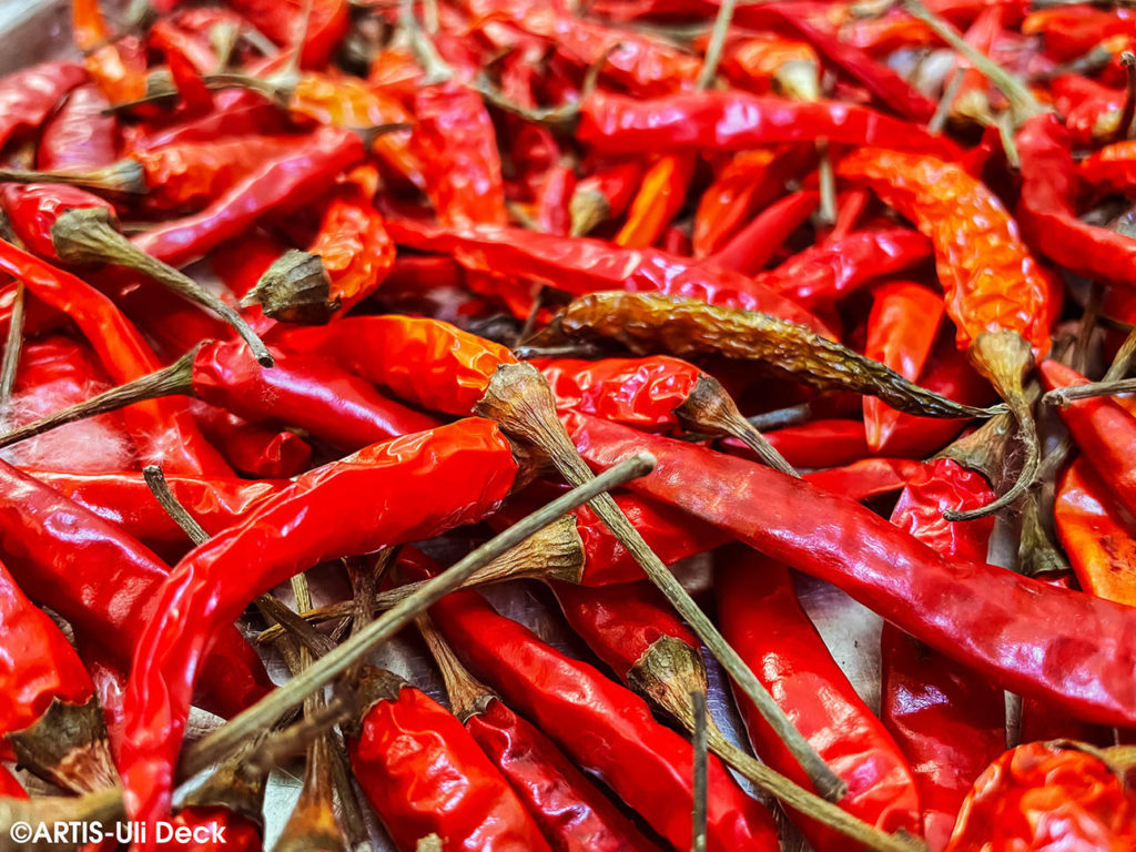 Scharfe rote getrocknete Chillies, wohl bekomms. Foto: COPYRIGHT: ARTIS-Uli Deck